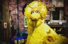 Big Bird Stars In New Obama Attack Ad